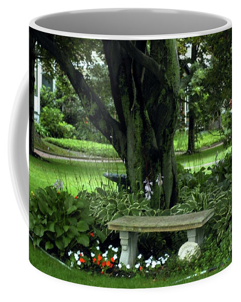 Tree Coffee Mug featuring the photograph Under The Tree by Kathleen Struckle