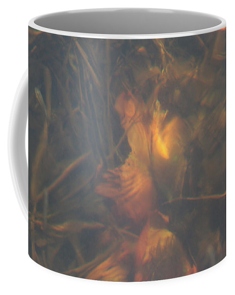 Waterlily Lake Water Fish Minnow Plants Lakebed Nature Wild Coffee Mug featuring the photograph Under Waterlily by Andrea Lawrence