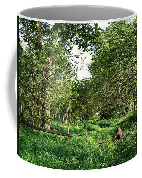 Nature Coffee Mug featuring the photograph Undergrowth by Dylan Punke