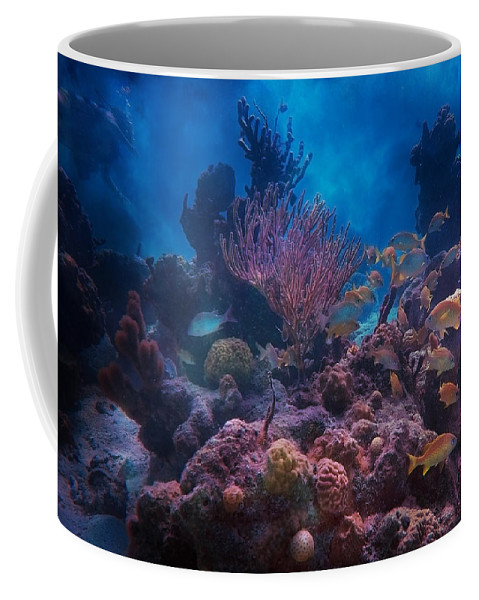 Fish Coffee Mug featuring the photograph Underwater Paradise by Betsy Knapp