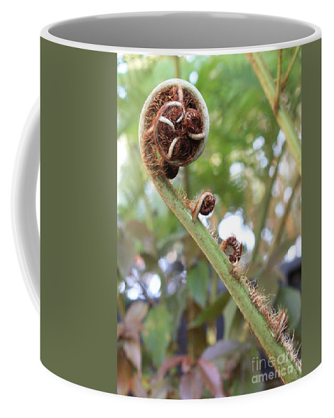 Nature Coffee Mug featuring the photograph Unfurling by Carol Groenen