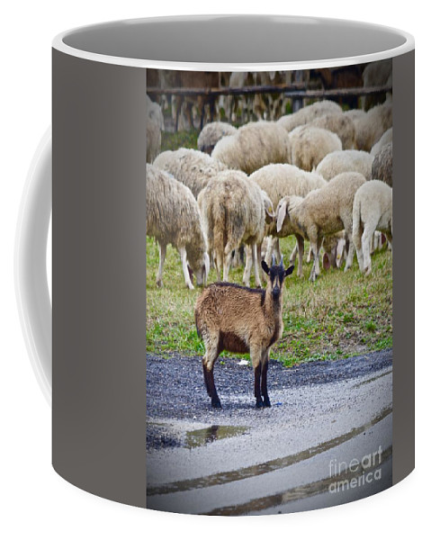 Unique Coffee Mug featuring the photograph Unique by Photos By Zulma
