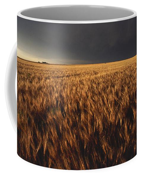 Nobody Coffee Mug featuring the photograph United States, Kansas, Summer Thunder by Keenpress