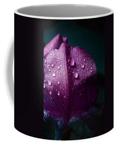 Flowers Coffee Mug featuring the photograph Untitled by Adam Vance