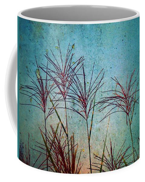 Zen Coffee Mug featuring the photograph Untitled by Tara Turner
