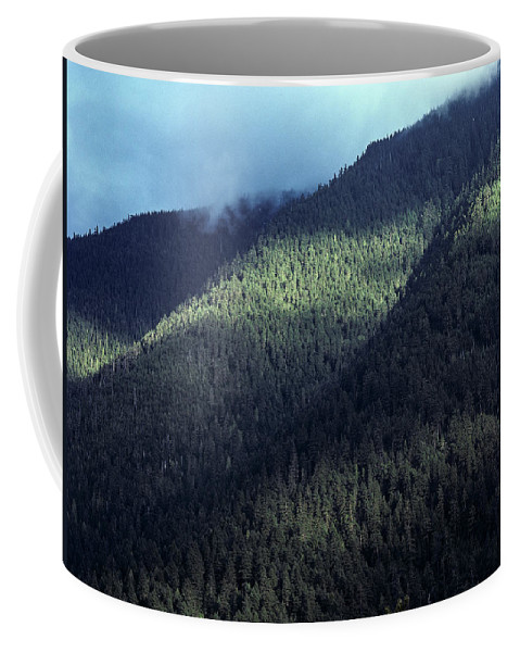 Forest Coffee Mug featuring the photograph Untouched by Robert Potts