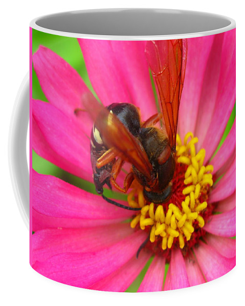 Bee Coffee Mug featuring the photograph Up Close And Personal by Brittany Horton