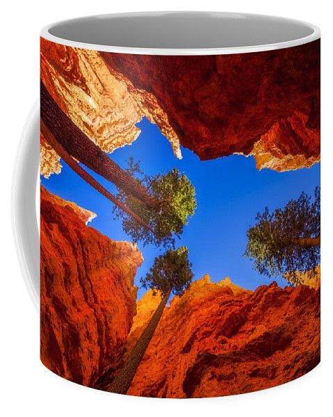 Up From Wall Street Coffee Mug featuring the photograph Up From Wall Street by Chad Dutson
