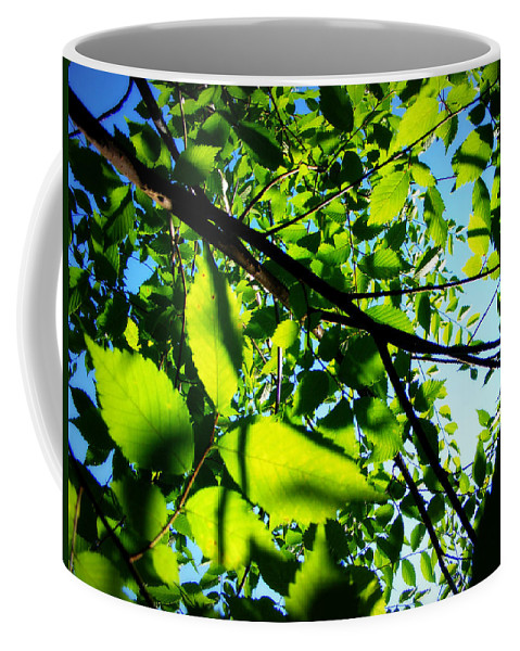 Leaves Coffee Mug featuring the photograph Up by Mandy Shupp