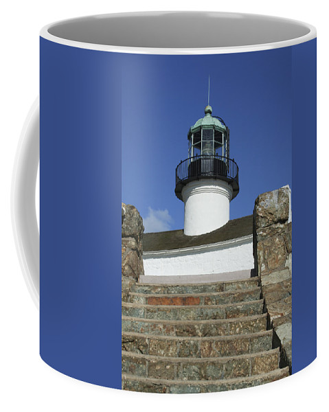 Bay Coffee Mug featuring the photograph Up To The Light by Margie Wildblood