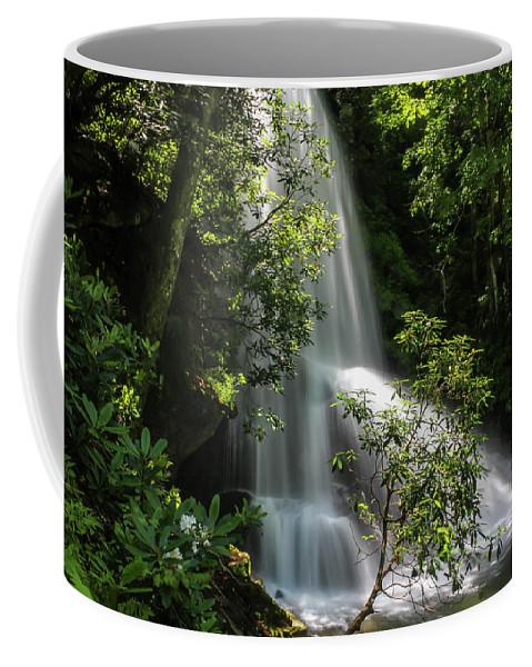 Catawba Falls Coffee Mug featuring the photograph Upper Catawba Falls by Chris Berrier