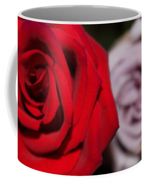Rose Coffee Mug featuring the photograph Upstaged Rose by Lauri Novak
