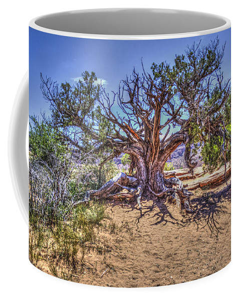Pictorial Coffee Mug featuring the photograph Utah Juniper On The Climb To Delicate Arch Arches National Park by Roger Passman
