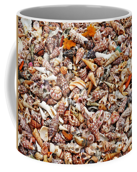 Shells Coffee Mug featuring the photograph Vacation Nation by Charles Stuart