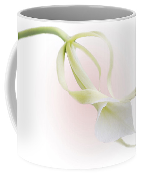 Love Coffee Mug featuring the photograph Valentine Orchid by Marilyn Hunt