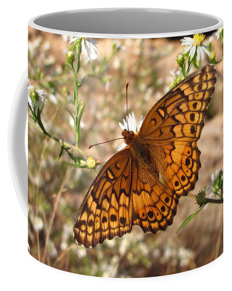 Variegated Fritillary Images Variegated Fritillary Prints Wildflower Prints Butterfly Prints Maryland Butterfly Images Butterfly Pics Meadow Conservation Wildflower Conservation Biodiversity Preservation Nature Wild Flora Botany Entomology Environmental Science Meadow Ecology Orange Butterfly Images Rare Butterfly Prints American Butterflies Maryland Butterflies Photos Pics Coffee Mug featuring the photograph Variegated Fritillary by Joshua Bales