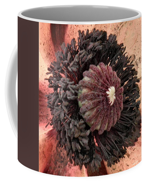 Poppy Coffee Mug featuring the photograph Velvet Core On Pink by T Cook