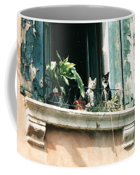Venice Coffee Mug featuring the photograph Venetian Cats by Lauri Novak