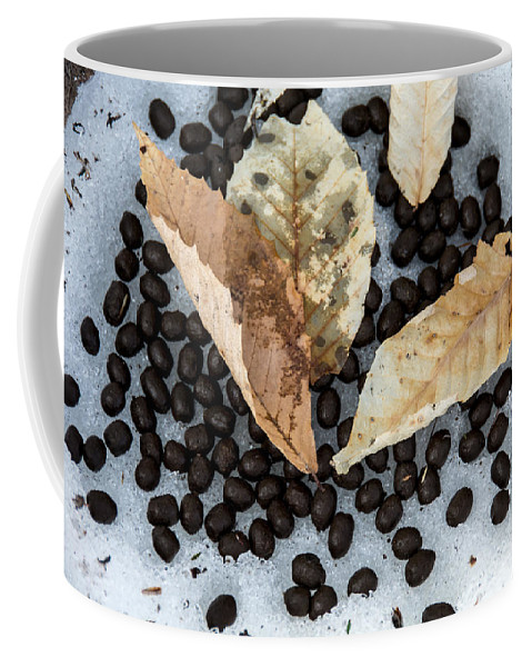 Deer Poop Coffee Mug featuring the photograph Vermont Deer Sign by Sherman Perry