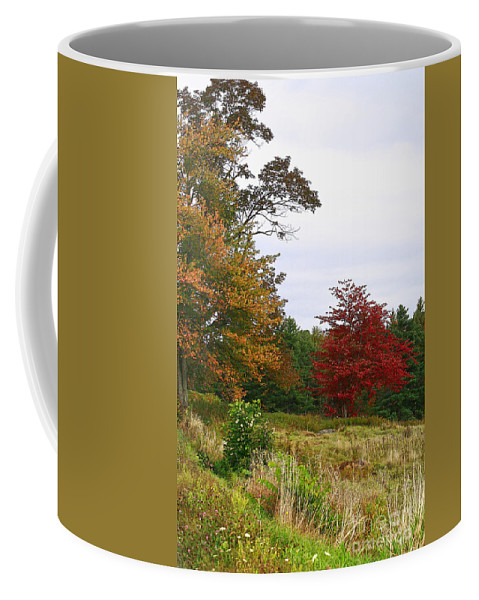 Fall Coffee Mug featuring the photograph Vermont Roadside Color by Deborah Benoit