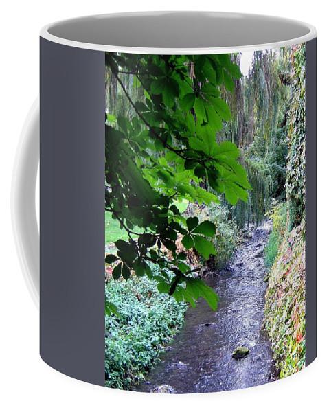 Vernon Creek Coffee Mug featuring the photograph Vernon Creek by Will Borden