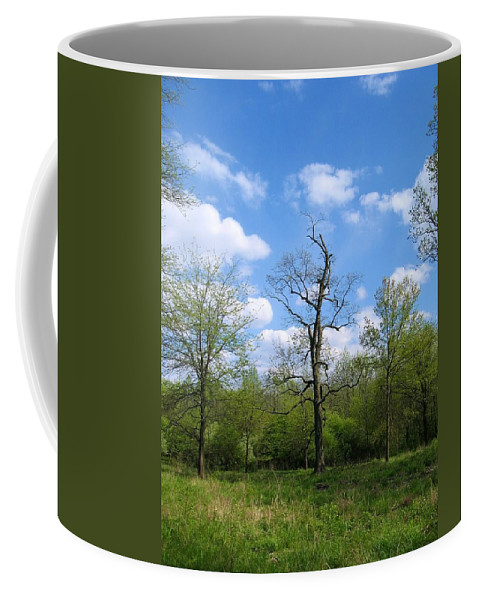 Landscape Coffee Mug featuring the photograph Vibrant Individualism by Dylan Punke