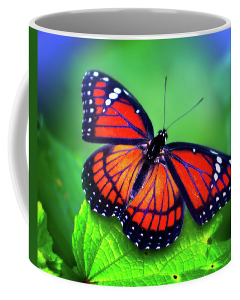 Monarch Butterfly Coffee Mug featuring the photograph Viceroy Perch by Mark Andrew Thomas