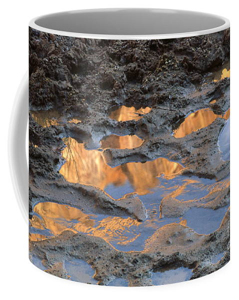 Southwest Coffee Mug featuring the photograph View To The Sky by Sandra Bronstein