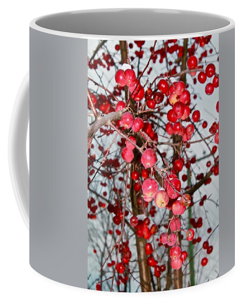 Photography Coffee Mug featuring the photograph Vignettes - Apples Cider by Mario MJ Perron