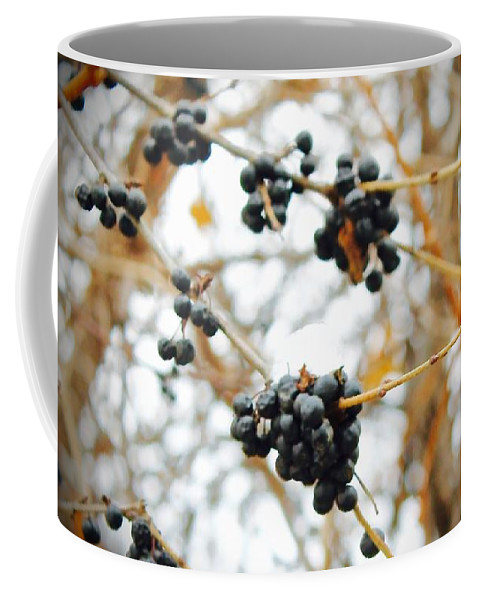 Berries Coffee Mug featuring the photograph Vignettes - Indigo Winter Berries by Mario MJ Perron