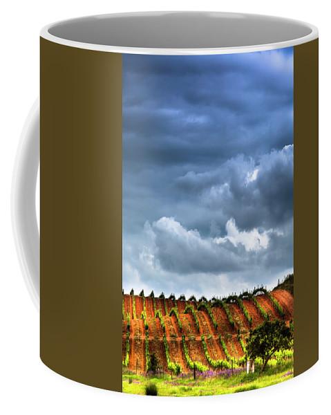 Vineyard Coffee Mug featuring the photograph Vineyard 01 by Edgar Laureano