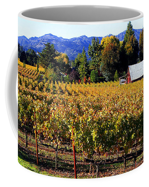 Napa Valley Coffee Mug featuring the photograph Vineyard 4 by Xueling Zou