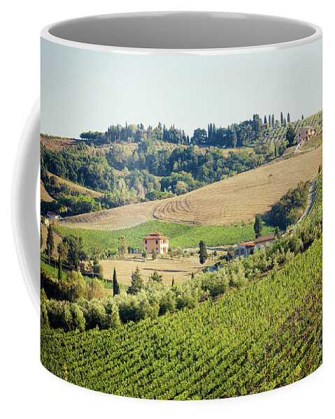 Agriculture Coffee Mug featuring the photograph Vineyards With Stone House, Tuscany, Italy by Antonio Gravante