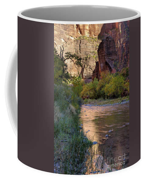 Hdr Coffee Mug featuring the photograph Virgin River Reflection by Sandra Bronstein