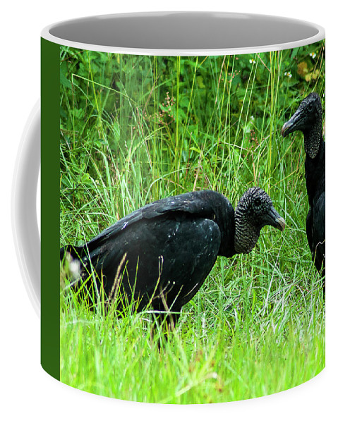 Black Vulture Coffee Mug featuring the photograph Vulture Pair by Norman Johnson