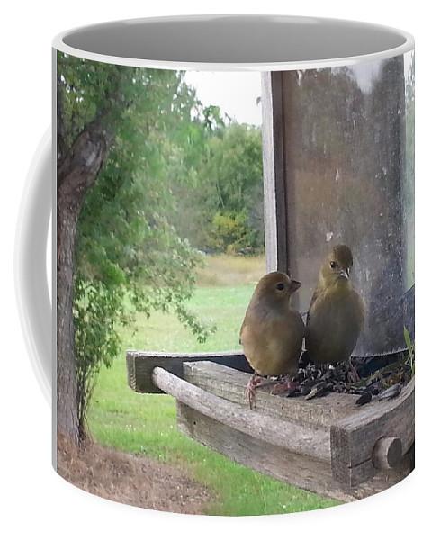 Birds Coffee Mug featuring the photograph Waching You Watch Us by Kenneth Lukowski