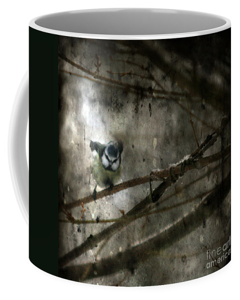 Blue Tit Coffee Mug featuring the photograph Waiting For Spring by Angel Ciesniarska