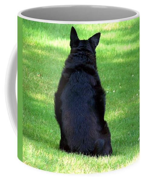 Dog Coffee Mug featuring the photograph Waiting by Jai Johnson