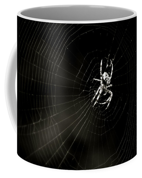 Spider Coffee Mug featuring the photograph Waiting by John Meader