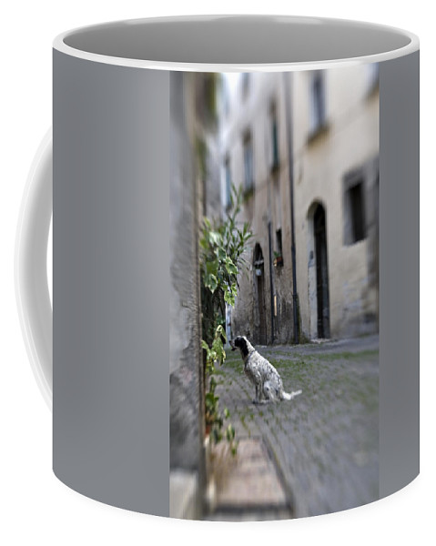Dog Coffee Mug featuring the photograph Waiting by Marilyn Hunt