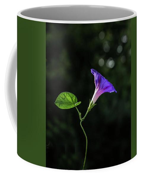 Flora Coffee Mug featuring the photograph Wake Up, Morning Glory by Joy Schmitz