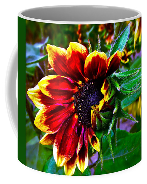 Sunflower Coffee Mug featuring the photograph Waking Up by Gwyn Newcombe