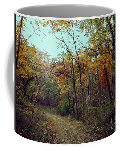 Trees Coffee Mug featuring the photograph Walk Through Lowell Park by Laura Birr Brown