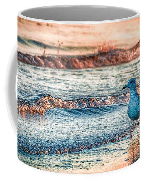 Ocean Coffee Mug featuring the photograph Walking On Sunshine by Mathias Janke