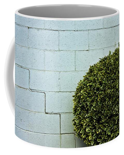 Wall Coffee Mug featuring the photograph Wall Art by Hannah Breidenbach