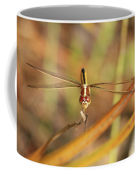 Wandering Glider Coffee Mug featuring the photograph Wandering Glider Dragonfly by Maili Page