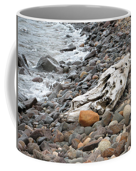 Driftwood Coffee Mug featuring the photograph Washed Up by Kelly Mezzapelle