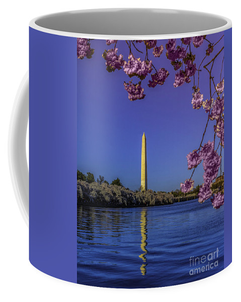 Blossoms Coffee Mug featuring the photograph Washington Reflection And Blossoms by Nick Zelinsky