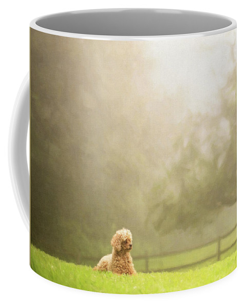 Animals Coffee Mug featuring the photograph Watch Dog by Sue Collura
