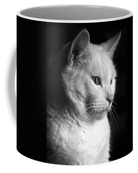 Nature Coffee Mug featuring the photograph Watchful by Bob Orsillo